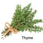 Thyme – How To & Journal